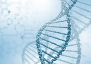 DNA and energy